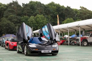McLaren F1 and Ferrari LaFerrari